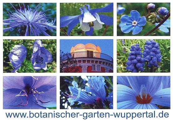 botanische gärten ev