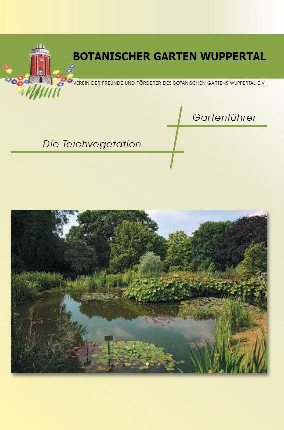 Die Teichvegetation Deckblatt